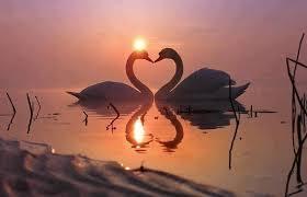 永遠の愛は誰にでも簡単に手に入ります。