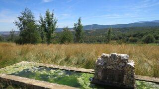 ヨーロッパの泉(水飲み場)について