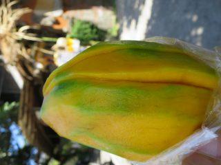 バリ島 ウブド オーガニックマーケット 魅惑のマンゴー