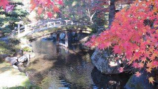 内閣官房や宮内庁を中心に「皇族の方に京都にお住まいい ただく」ことが検討されている