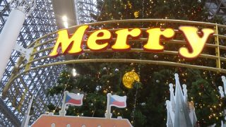 京都駅クリスマスツリークイズ~っ!