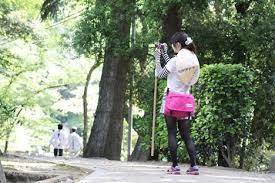 (四国遍路を)私もいつか歩いて回りたいです。