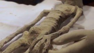 X線調査【ナスカの墓の3本指の小人】お腹に卵も!