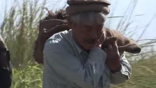 ペシャワール会【中村哲医師】白衣を脱いで水路を掘り60万人の生活を可能に