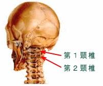 【頸椎のズレの遠隔浄化】「2番の左へのずれはかなりひっこんでいるように感じます。(すごいことですよね?)」